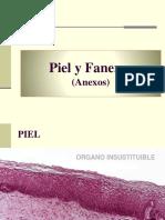 CLASE Piel y Faneras