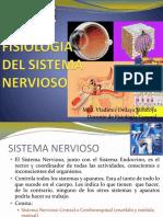 Clase 9 - Fisio Sist Nervioso
