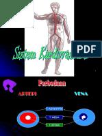 Anfis Sistem Cardiovasculer Firmina