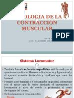 Clase 3- Fisio Musculo
