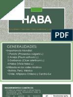 Presentacion Haba