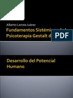 Fundamentos Sistemicos de La Psicoterapia Gestalt de Grupo