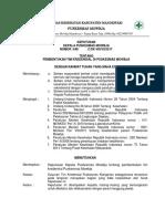 8.7.1.3 Sk Pembentukan Tim Kredensial Tenaga Klinis