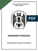 Portafolio AIY.docx
