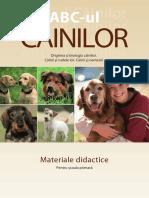 Fascinating Dogs Romana
