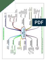 Mapa Mental Metaprogramas