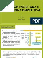 Difusión Facilitada e Inhibición Competitiva
