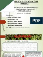 INTELIGENCIA EXPOSICION 12345.pptx