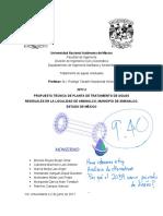 PTAR Amanalco de Becerra Proyecto Final (1)