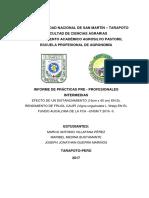 Informe Frijol Caupí 15x40 Corregido