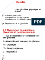 2009 P1 Physiologie Feugeas 2 Glycolyse