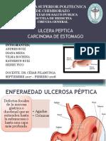 Completo Ulcera Peptica