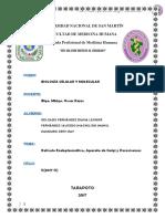 informe editado