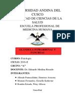 Glándula Suprarrenal y Páncreas (Monografia)