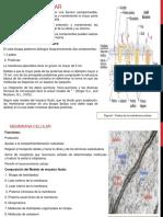 Atlas Biologia