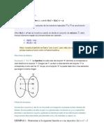 Función Inyectiva y Metrologia