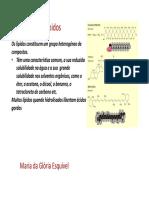Aula Lípidos.pdf