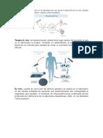 Terapia génica.docx
