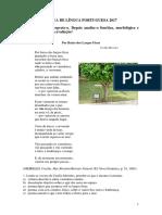 Exame-de-seleção-NOKIA-2017.pdf