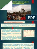 8. Proceso de Participación Ciudadana