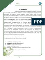 Proyecto Integrador de Telematica (final)