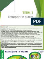 Biology Transport in Plants
