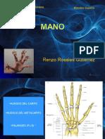 Repaso Anatomia Grupo Atlas Mano