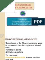 Bio Synthesis of Amino Acids OK