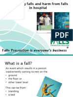 Nsw Falls Prog Hosp Present Prevent Falls and Harm From Falls in Hosp July 2013