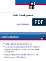 Brain Development Report