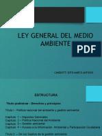 Ley General Del Medio Ambiente 28611 Diapostv (1)