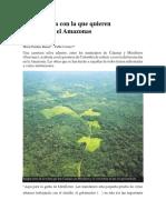La Carretera Con La Que Quieren Pavimentar El Amazonas