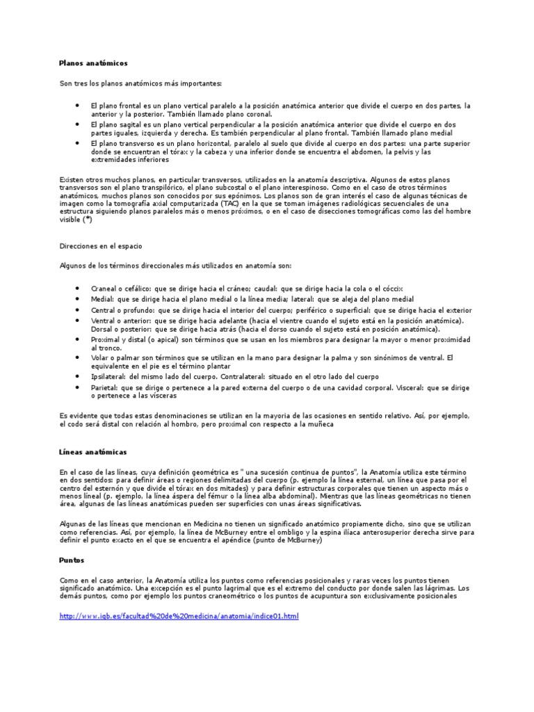 Dorable Anatomía Práctica Términos Direccionales Patrón - Imágenes ...