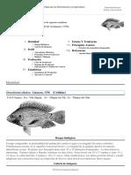FAO Fisheries & Aquaculture - Programa de Información de Especies Acuáticas - Oreochromis Niloticus (Linnaeus, 1758)