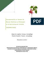 Informe Final Fitoterapia 30-12-2015
