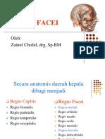 Anatomi Facei