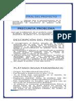 Proyecto Harina de Platano