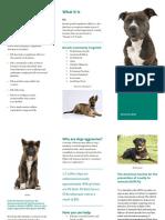 bsl brochure 1