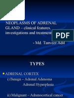 Adrenal Neoplasms 1
