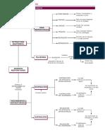 tema6maparespiratorio.pdf