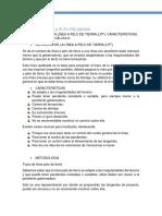 proyecto-chido.docx