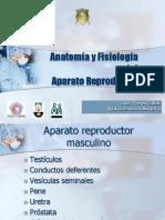AnatomíaFisiología