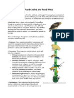 Food Chains and Food Webs DF (1).doc