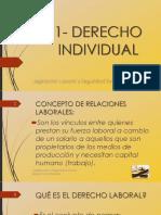Bolilla 01 - Derecho Individual