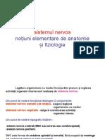 1anato Neuro (2)