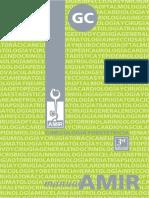 Manual de Ginecología y Obstetricia. AMIR 3a Edición.pdf
