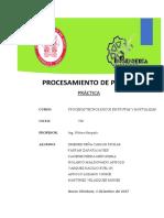 Pastas Vegetales Informe