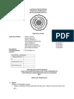 Laporan Praktikum Semisolid Revisi 2
