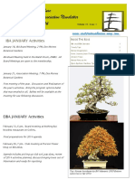 Tropical Bonsai School Brochure Bonsai Plant Life Form