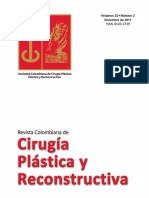 Cirugía Plástica y Reconstructiva Volumen 23 Nº 2 Diciembre 2017